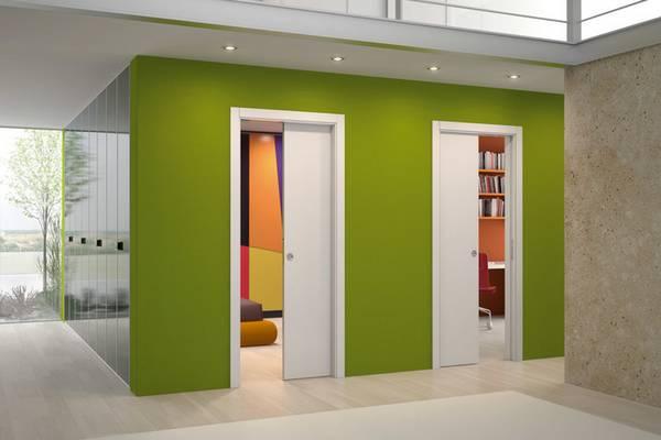 Раздвижные двери для гардеробной: красивые и функциональные двери на 29 фото