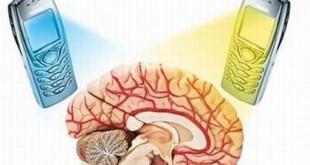 Влияние телефона на мозг