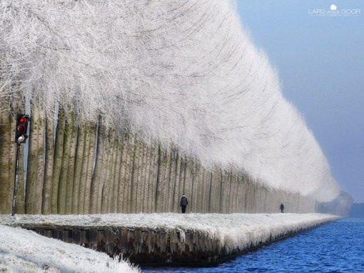 Зимова алея біля річки
