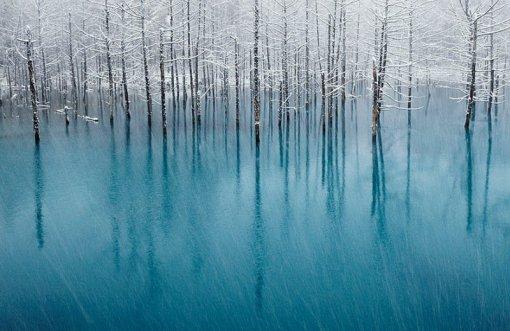 Чарівні зимові гори та ліс