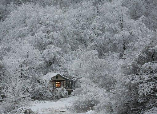 Будинок серед зимового лісу