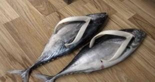 Шлепанцы – обувь, чрезвычайно опасная для здоровья