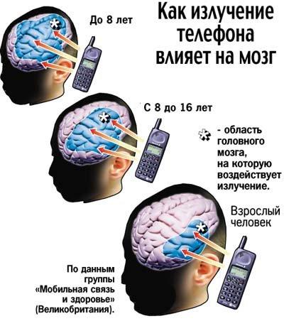 Как микроволны сотового телефона влияют на мозг