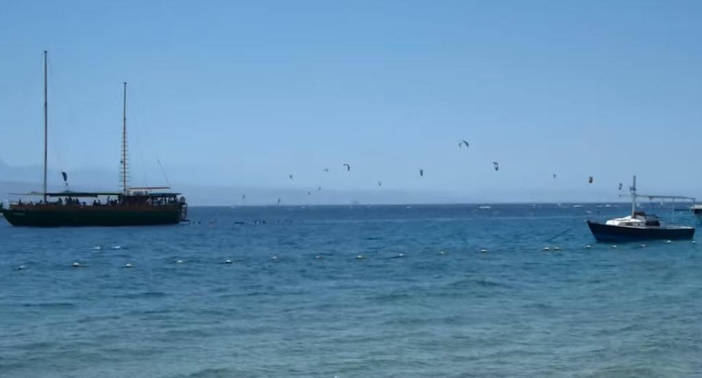 Красное море не устаёт удивлять своими чудесами