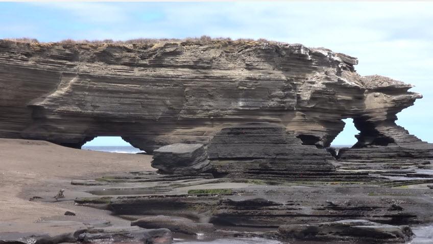 Галапагосские острова: уникальные  животные