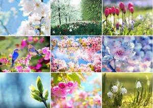 Выходные праздничные дни в мае 2016 в Украине